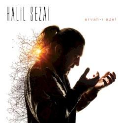 Halil Sezai - Git
